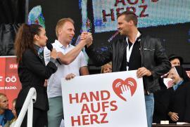 Hand aufs Herz 142