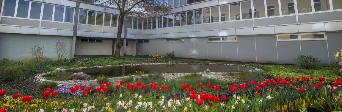 Klinikum Innenhof
