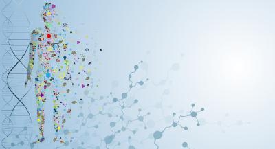 Molecule Body