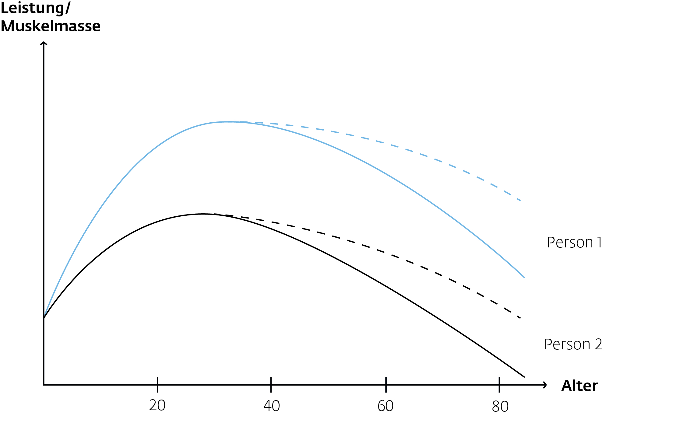 Grafik Muskelabbau